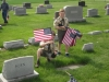 flags_for_veterans_graves_004