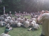 camp_minsi_2011_stockdale_0005
