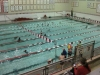 swim_night_2014_002