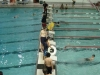 swim_night_2014_008