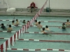 swim_night_2014_009