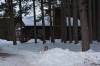winter_camp_2014_0043