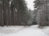 winter_camp_2012_0002