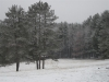 winter_camp_2012_0004